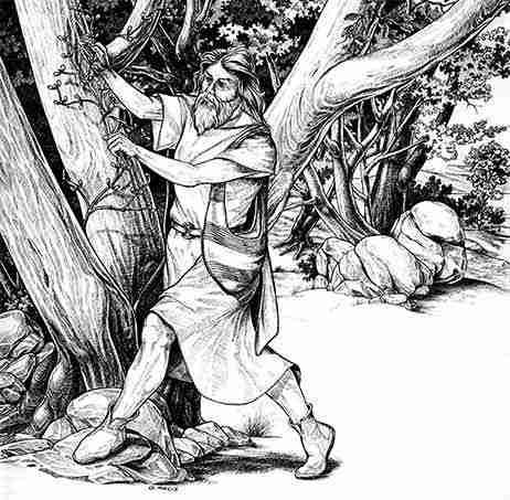 druidi celtici